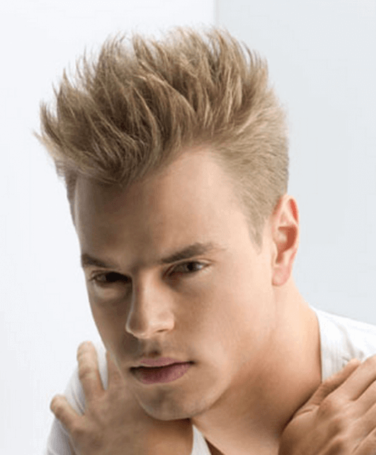 Mens Punk Hairstyle